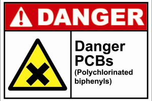 The Health Effects of Polychlorinated Biphenyls